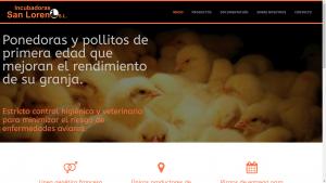 Pantallazo de la web de Incubadoras San Lorenzo