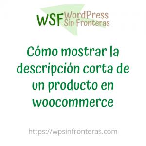 Cómo mostrar la descripción corta de un producto en woocommerce